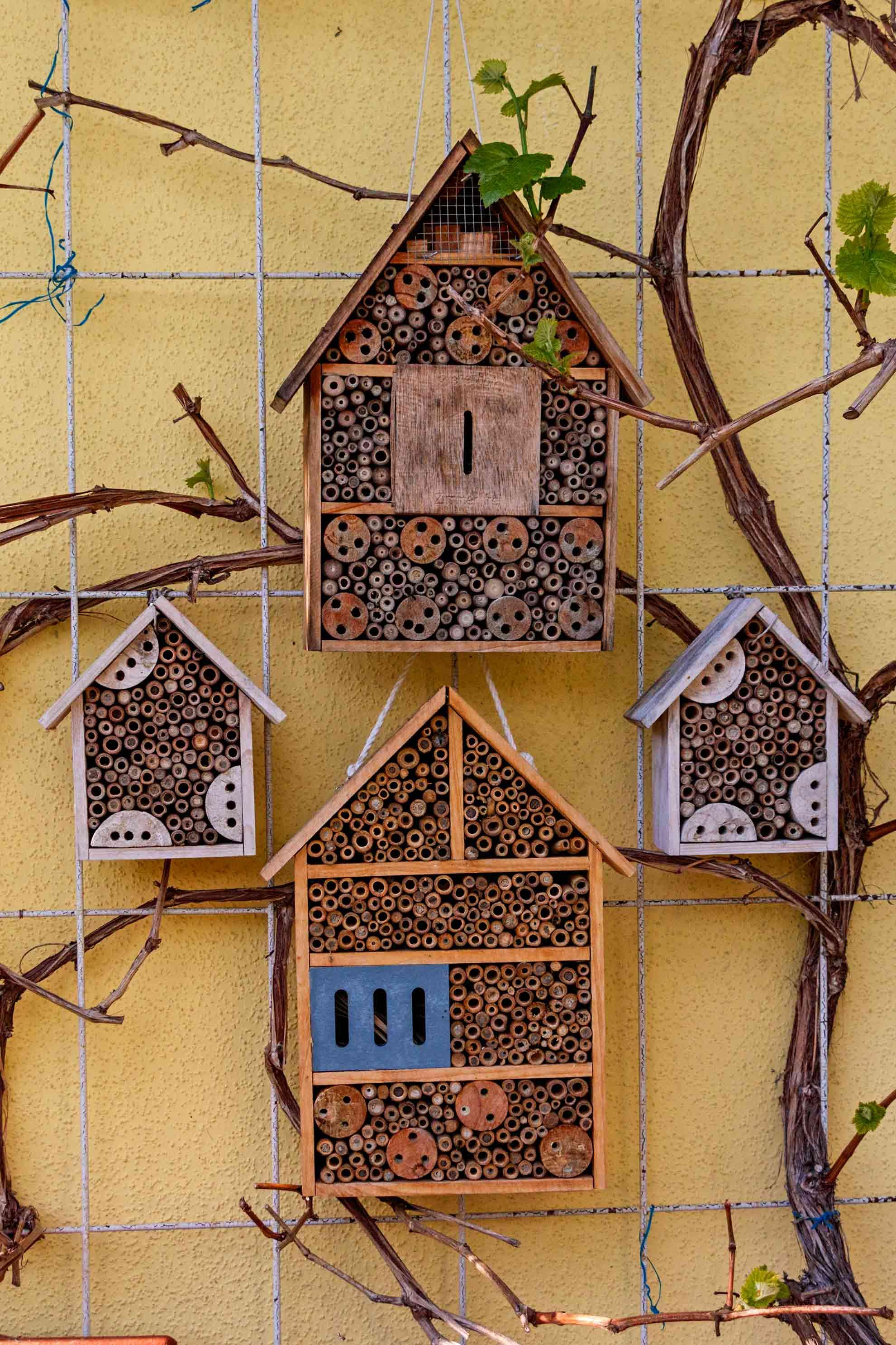 Insektenhotels bieten Lebensräume und Nistplätze für Nützlinge, darunter natürlich auch Wildbienen (Foto: Ingrid Bechler)