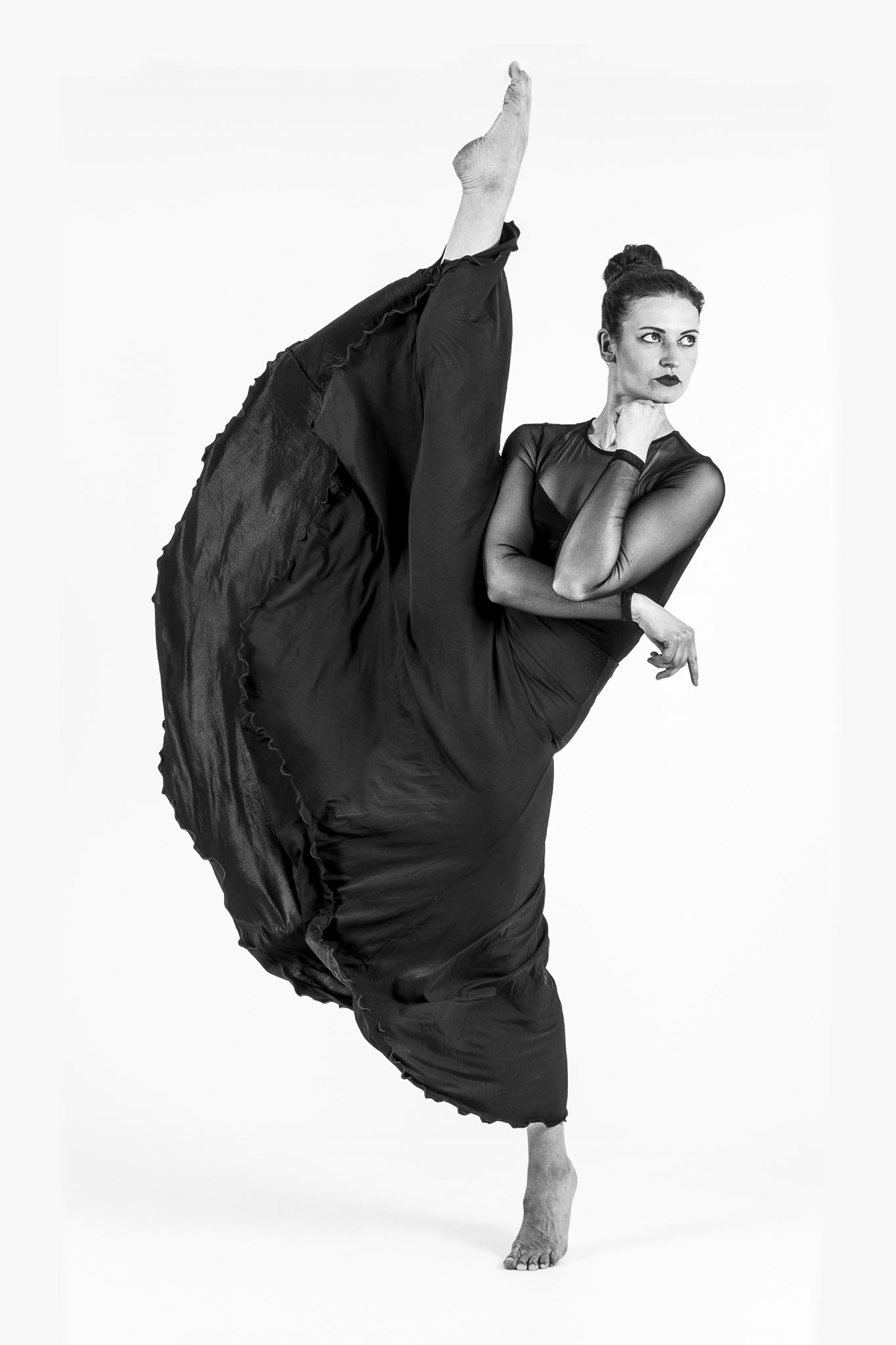 Fotoclub Wolfratshausen_B1_Ilmberger Andy_Black Swan