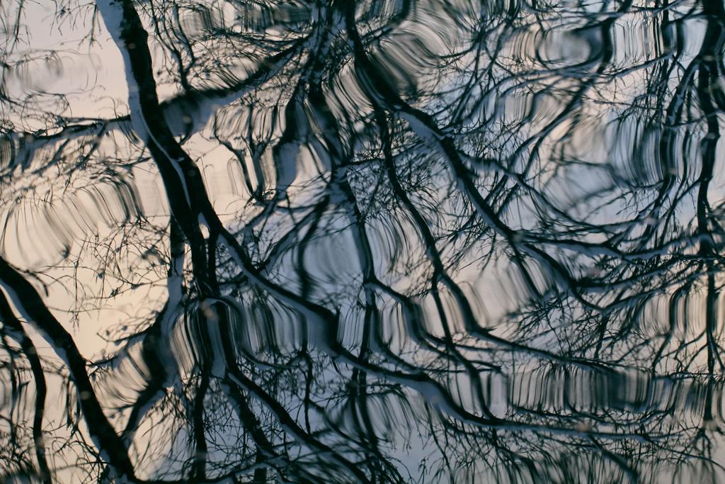 Spiegelung (Foto: Gisela Moutschka)