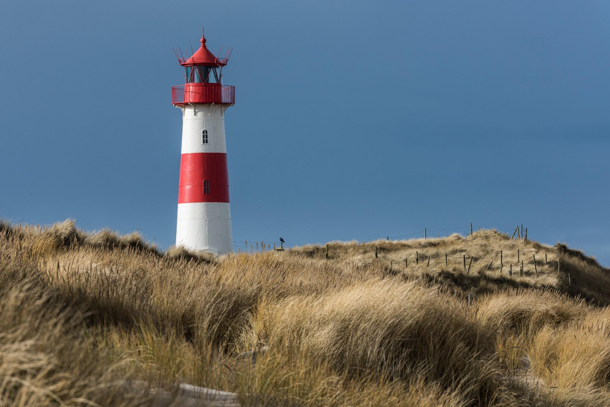 Leuchtturm (Foto: Niklas Neubauer)