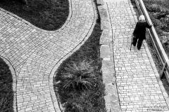 Lebenswege (Foto: Sandra Ilmberger)