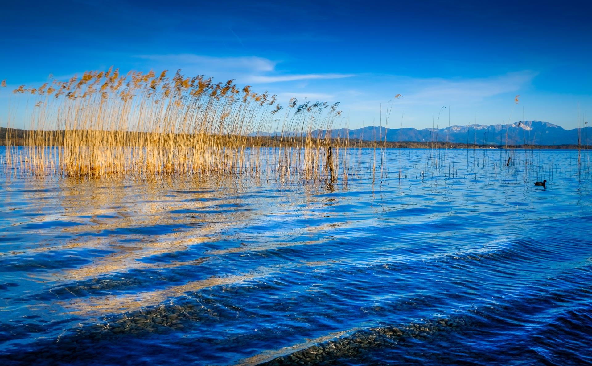 Starnberger See von Helga Orterer