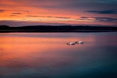 Sonnenuntergang am Starnberger See von Birgit Rilk