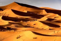 Sahara-Wüste Marokko von Gisela Moutschka
