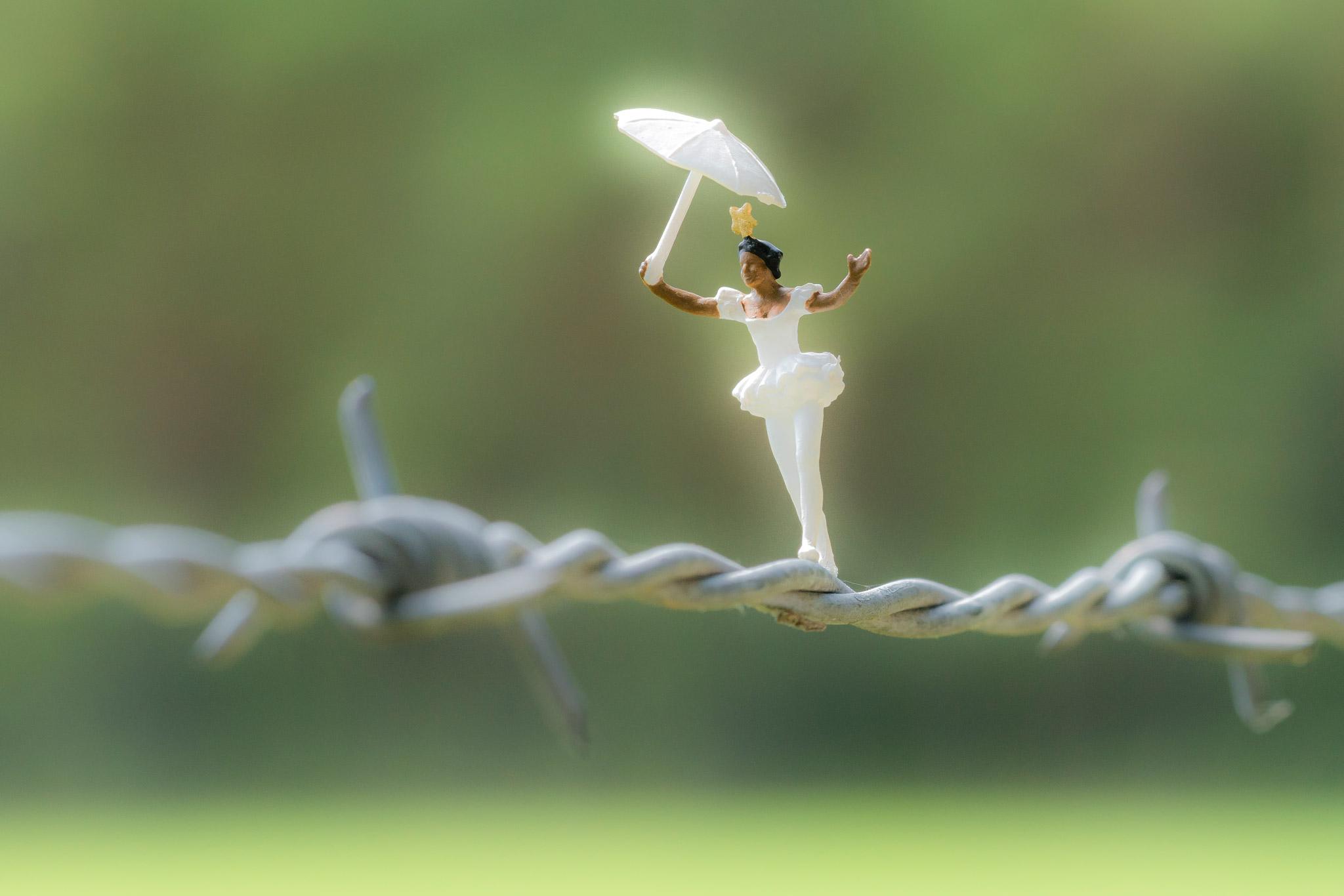 H0-Helden: Seiltanz auf Stacheldraht (Foto: Andy Ilmberger)