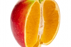 """Platz 10: \""""Apfelsine\"""" von Andy Ilmberger"""