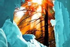 """Platz 6: \""""Klimawandel\"""" von Klaus-Peter Volkmann"""
