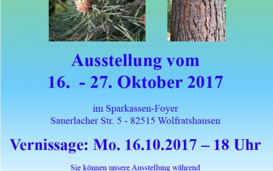 """Fotoausstellung """"Föhren"""" des Bund Naturschutz in Bayern und Fotoclub Wolfratshausen"""