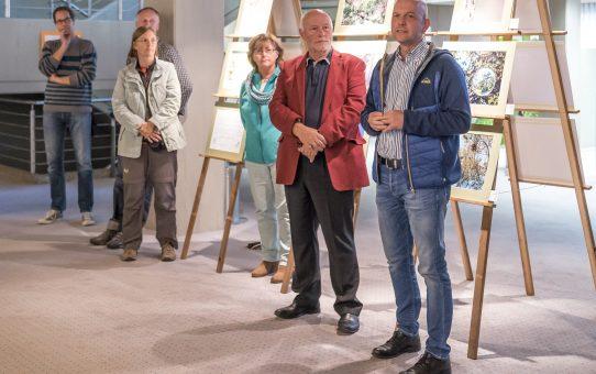 """Bericht von der Fotoausstellung """"Föhren"""" zusammen mit dem Bund Naturschutz"""