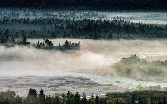 9. interner Wettbewerb 2017: Im Nebel