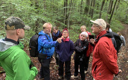 Unterwegs mit Peter Karasch: ein Ausflug in das Reich der Pilze