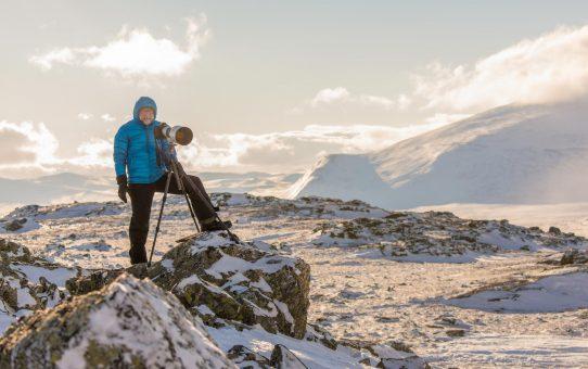 Unter Wölfen, Bären und Nordlichtern - ein Fotovortrag von Karl Seidl