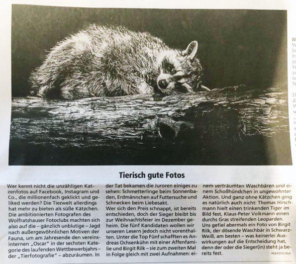 ILB 28.8.2019 Wettbewerb Tierfotografie
