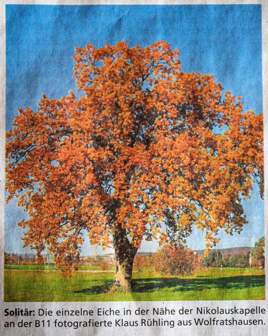 Isar-Loisachbote/Merkur (21.11.2020): Herbstfoto von Klaus Rühling