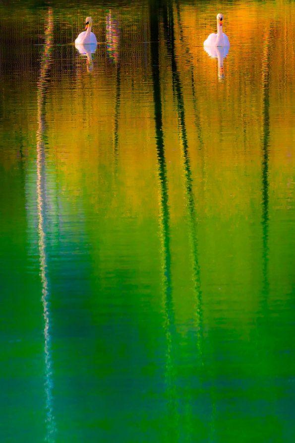 WB_Wasser abstrakt_13